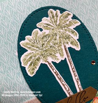 Palm Trees Close-2