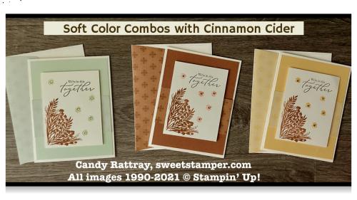 cinnamonciderstaminupincolorscandyrattray